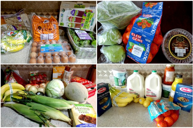 weekly-grocery-shopping-pictures